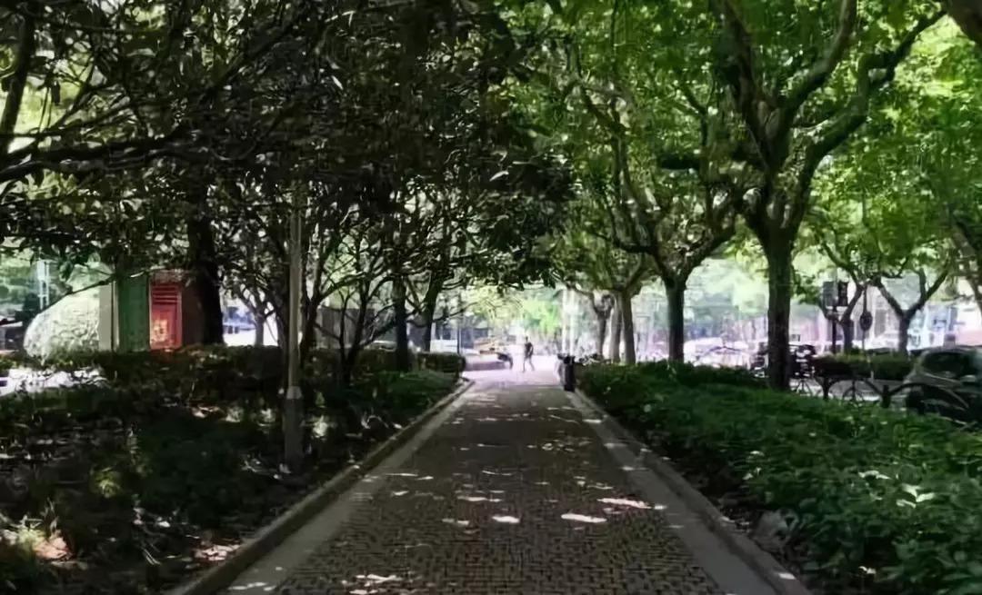 有美食有故事!上海这10条小马路,藏了大半个老上海的记忆!