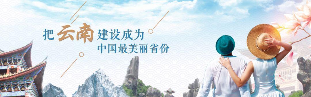 """电子合同成为云南""""旅游革命""""又一新举措!将对旅行社重点检查,严查违法违规行为"""