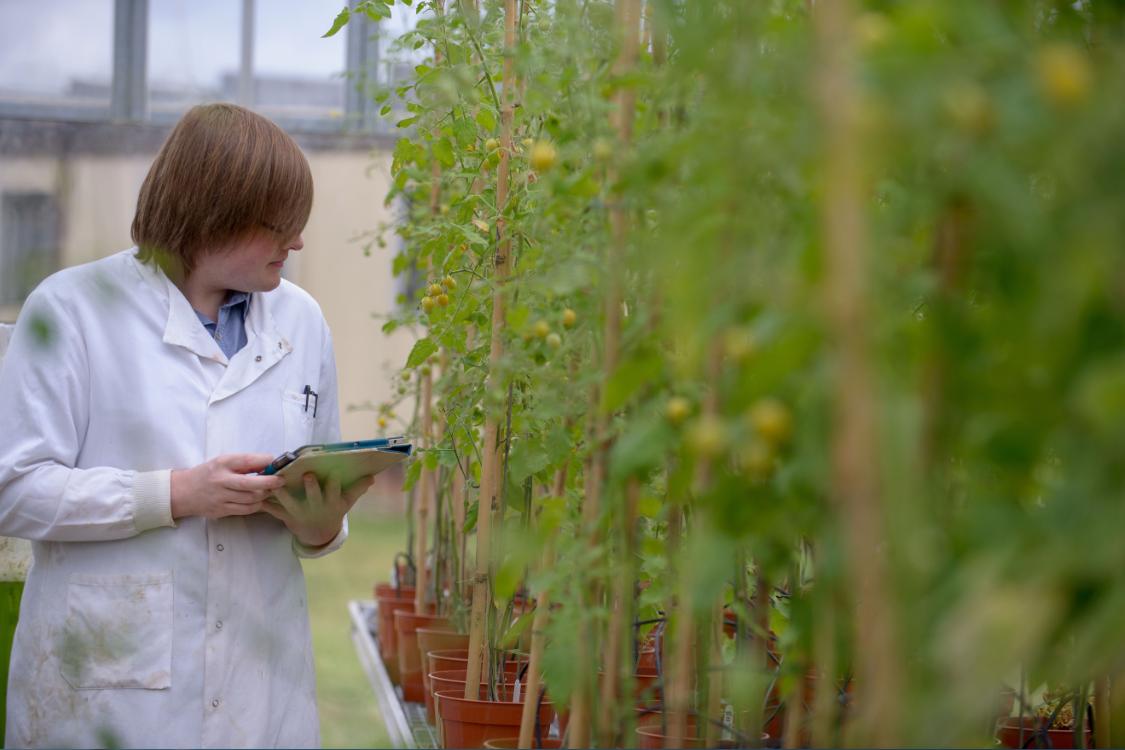 排名榜单外的另类选择,英国顶尖研究型大学食品科学解析