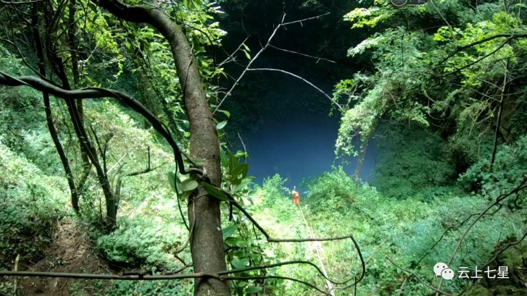 梦见被困在森林出不去