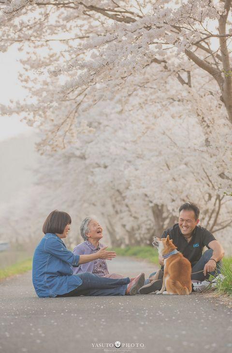 日本小哥給奶奶和家裡的柴犬拍攝了一組照片,看完心都要被暖化了… 萌寵 第5張