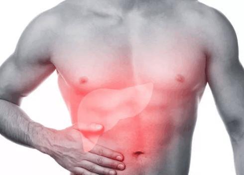 肝脏作为人体重要的解毒器官 护肝吃什么比较好?