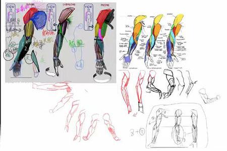 【精选】动漫画里绘画手臂的技巧