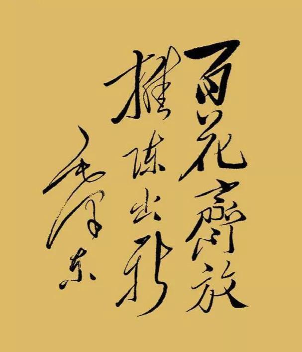 在实现中国梦,夺取新时代中国特色社会主义伟大胜利的征途中,更需要一