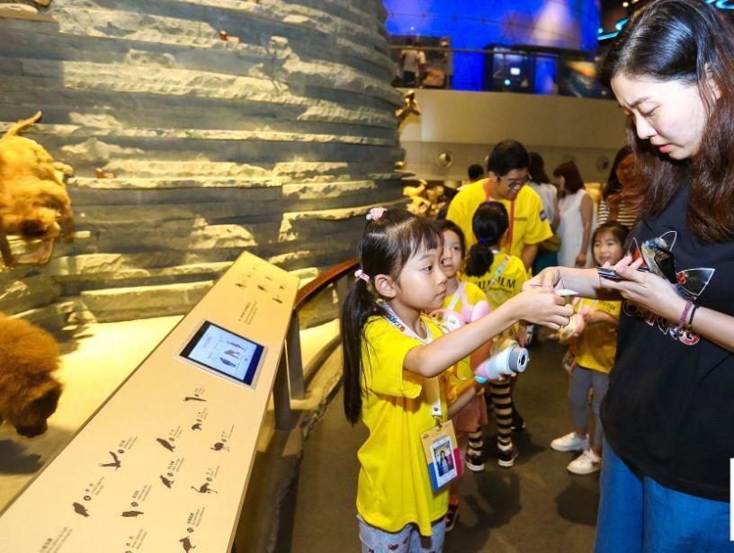 用鏡頭記錄「視覺日記」 讓孩子探索世界之美
