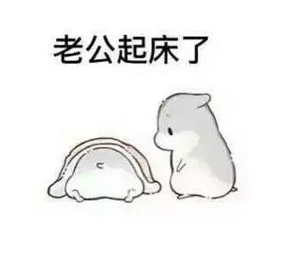 小仓鼠撩老公表情包_微信图片