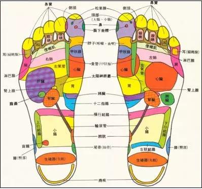 """""""脚""""!这个""""黑科技""""垫子放在鞋里1小时除臭吸汗告别臭脚!"""