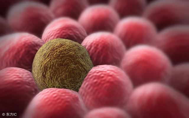 癌症能被彻底根除吗?