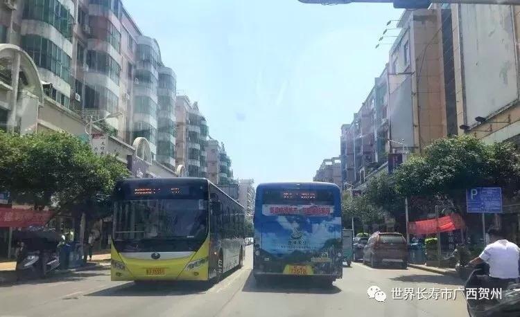 公交18路线 运行路线 :市实验中学(贺州高中老校区)——芳林中学路口图片