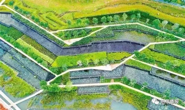 国家级湿地公园 ▼ 海南海口五源河国家湿地公园 海南海口美舍河国家