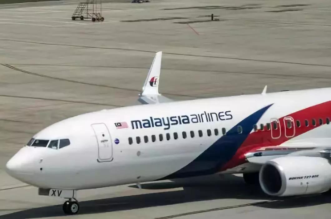 英专家称发现马航mh370:在柬埔寨密林 机身似有缺口图片