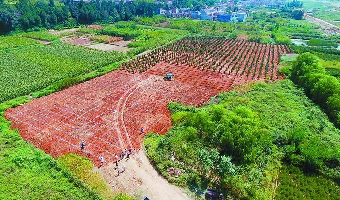 秦岭保卫战 蓝田县累计拆除违建103处 逾6万平方米
