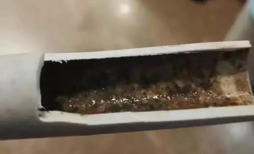 现实中的自来水管竟然长这样!还不改清洗吗?