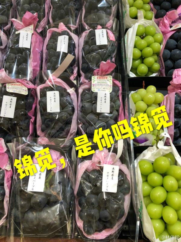 林依輪偶遇80元一顆天價葡萄 楊紫:是錦覓本覓