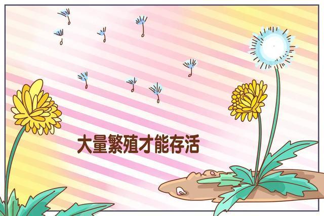 澳门金沙4787.com官网 20