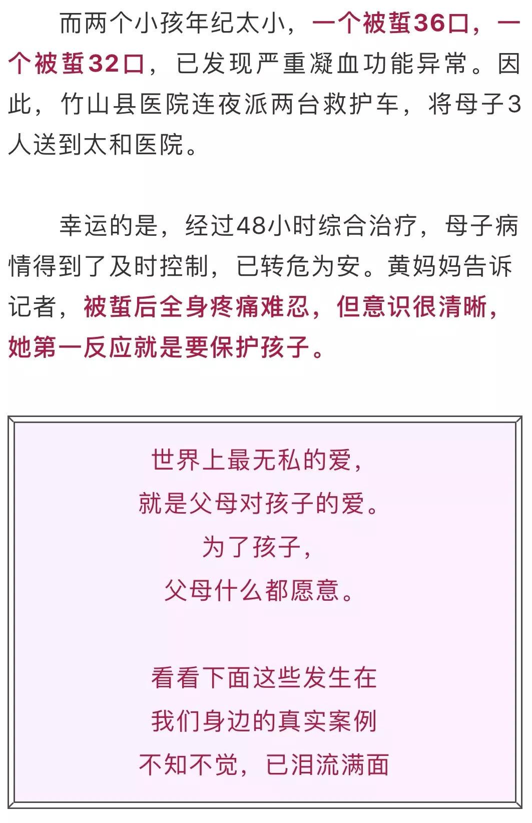 美高梅手机登录网站 3