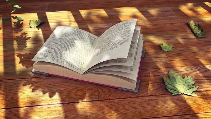 10本书,10个问题,描绘了他的批判性课程建设之路……