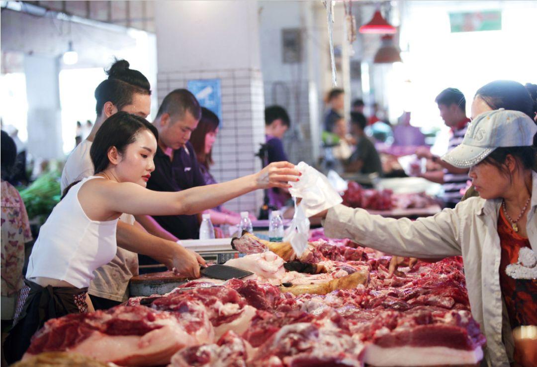 非洲猪瘟肆虐,竟是俄罗斯惹的祸?