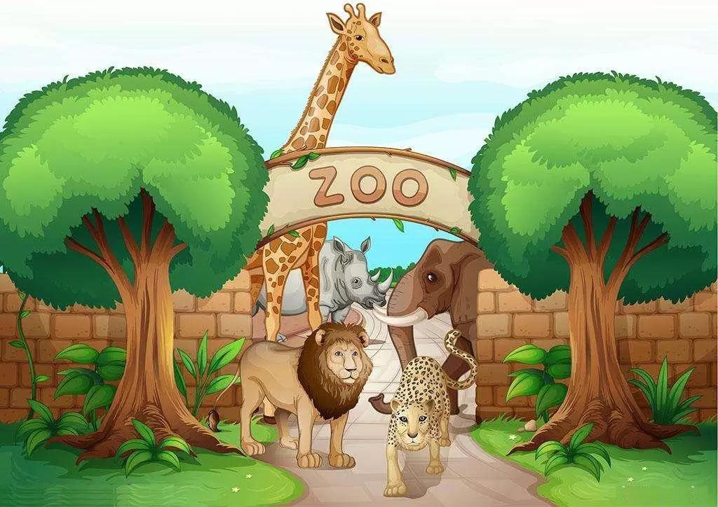 【济南亚美欧国际英语】外教周末带你畅玩动物园!