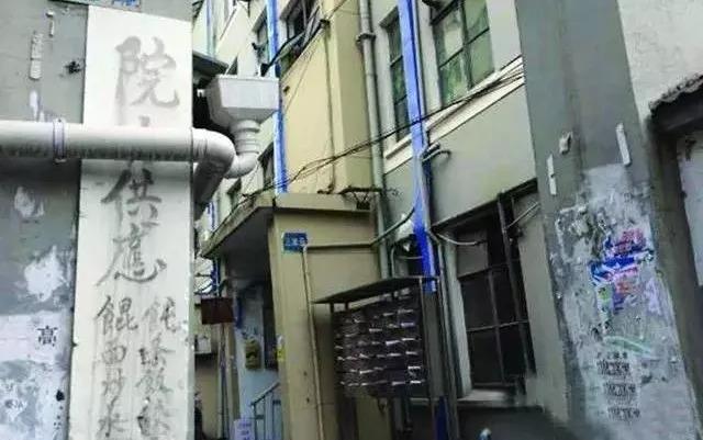 新萄京 95