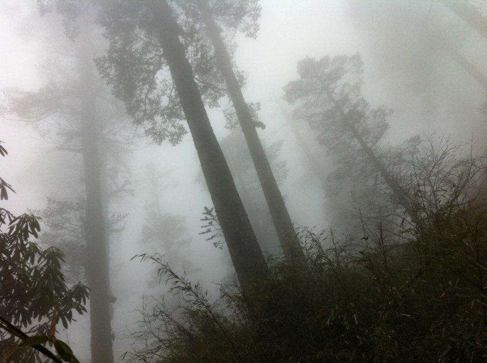 四川最神秘的山,被划入旅游禁区被封400年,去的人无一生还