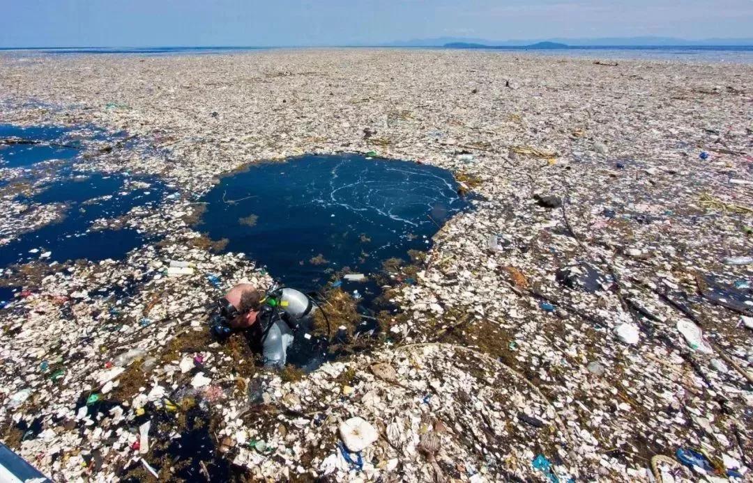 但随着摄影师和研究人员探索不断发掘,越来越多的海洋环境污染也让