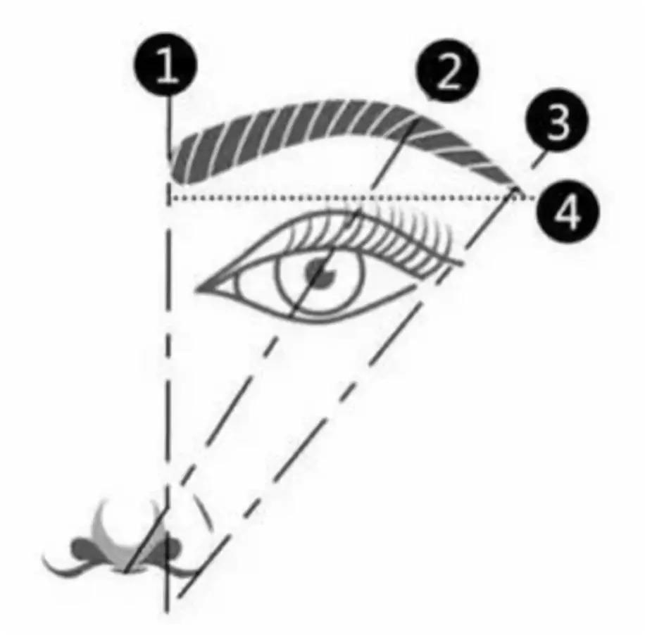 漂亮眉毛能给你的美貌加几分?从《延禧攻略》和《如懿传》看眉形