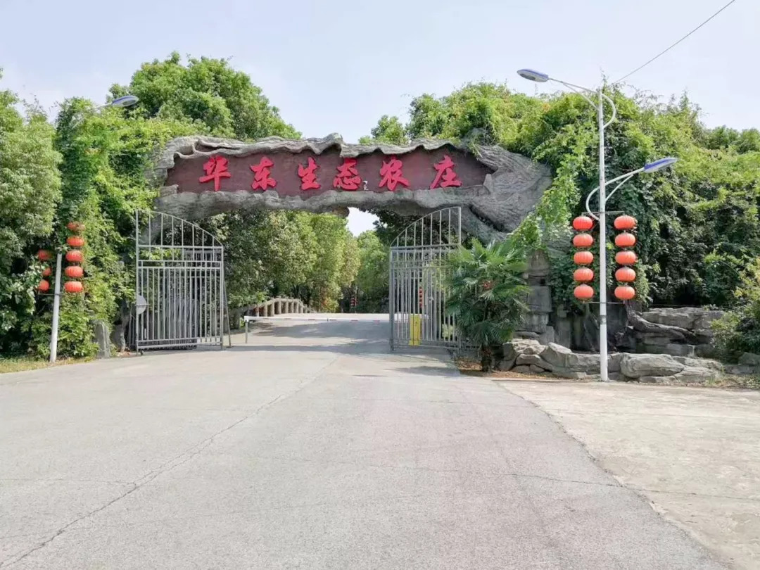新普京娱乐 23