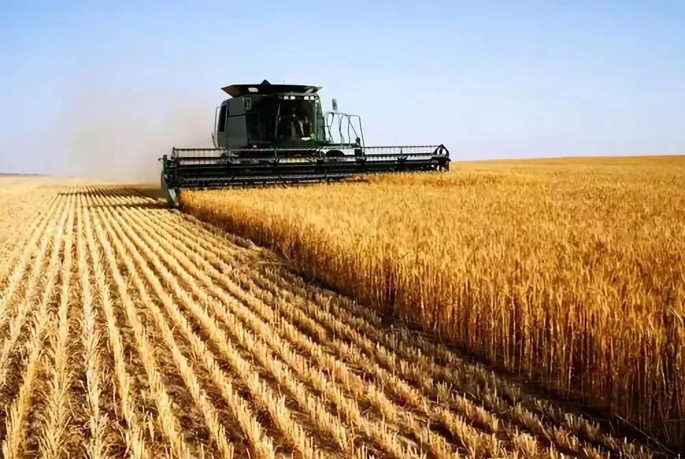 不懂这6种逻辑,你永远是现代农业的 门外汉