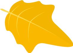 澳洲时时彩官方开奖结果 3