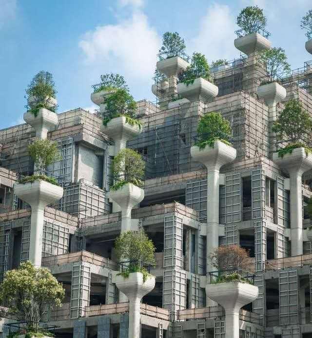 """现实版""""巴比伦空中花园"""",上海伙伴们又多个休闲游玩的图片"""