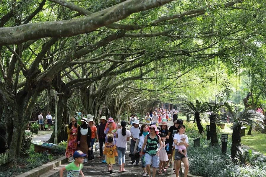 海口火山口公园打造生态文化、观光度假、普法宣传一体文化公园景区