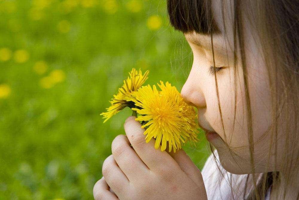 嗅觉失灵是哪些疾病的前兆呢?