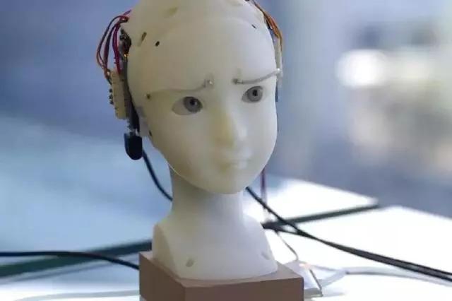 WWW_51SEER_COM_seer 的眉毛就能形成相当复杂的形状~ …… 这些种种不同情绪, 都能