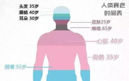 哈佛報導:國際最新「抗衰法則」,讓你更年輕