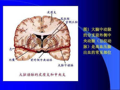 澳门太阳集团2007网站 3