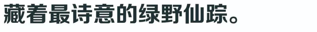新浦京网投站网止 36