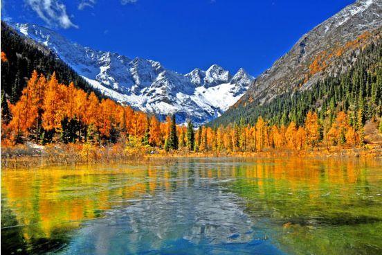 达古冰川历年彩林美景   :中国网图片