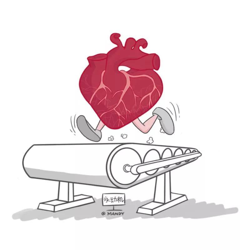 图解 | 心脏是维持生命的永动机,出现这些症状是危险信号