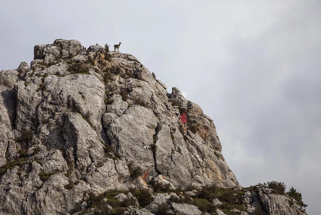 海拔4千米的峭壁间镶嵌着一座古老寺院,文成公主的嫁妆已转动千年