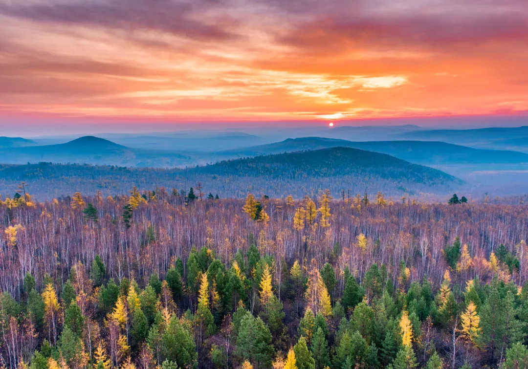 """""""爆款赏秋地"""",这些地方呈现了黑龙江秋天的极致美景!"""
