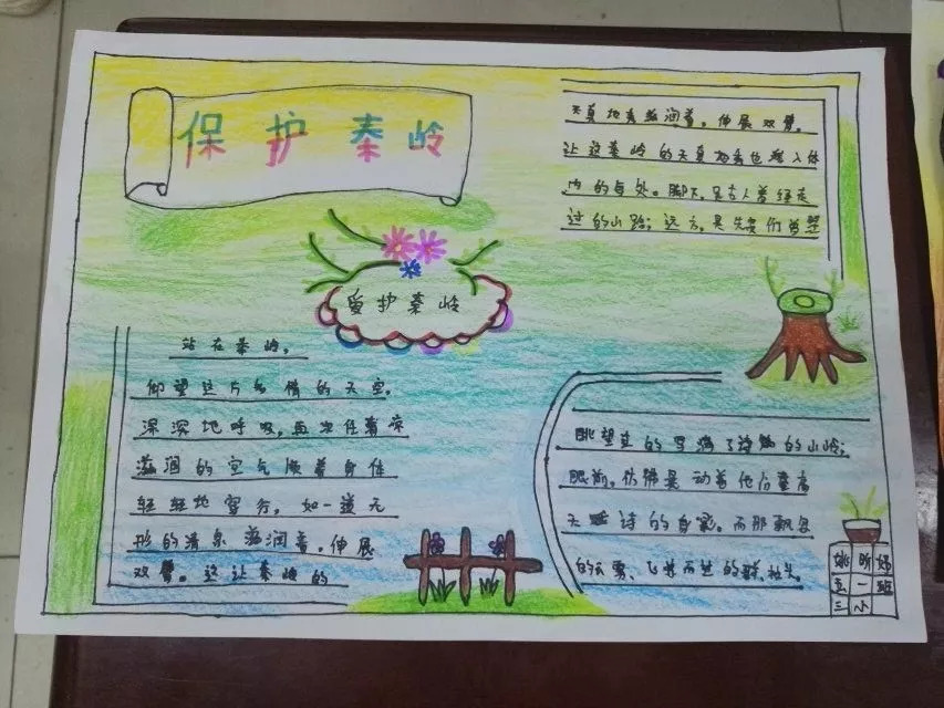 【校园动态】保护环境 爱我秦岭——西安沣东第三小学图片