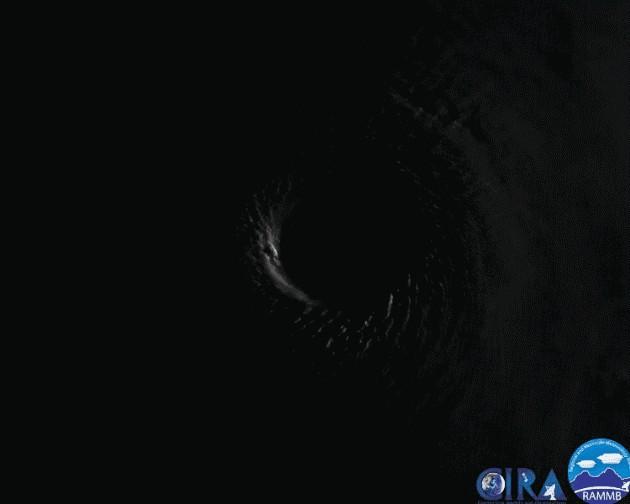 澳门新葡亰官网app 11