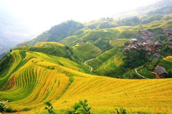 广西桂林旅游攻略:国庆十一自驾游龙脊梯田,老司机推荐超级攻略