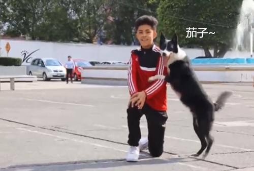 狗狗有特殊爱好,喜欢到处找别人合影,热情到主人也很无奈
