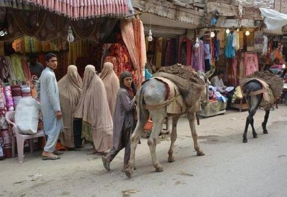 中国夫妇到巴基斯坦,做了一件不好的事