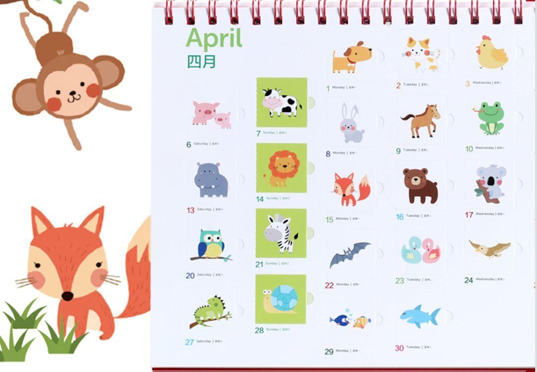 拼团| 2019年儿童台历,一日一单词,一月一主题,一年熟记365个单词图片