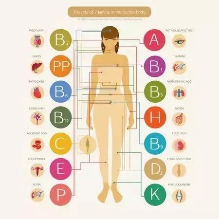 你缺哪種維生素?一看便知!