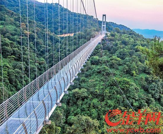 佛山南丹山建成廣東最長玻璃橋 中秋假期正式開放