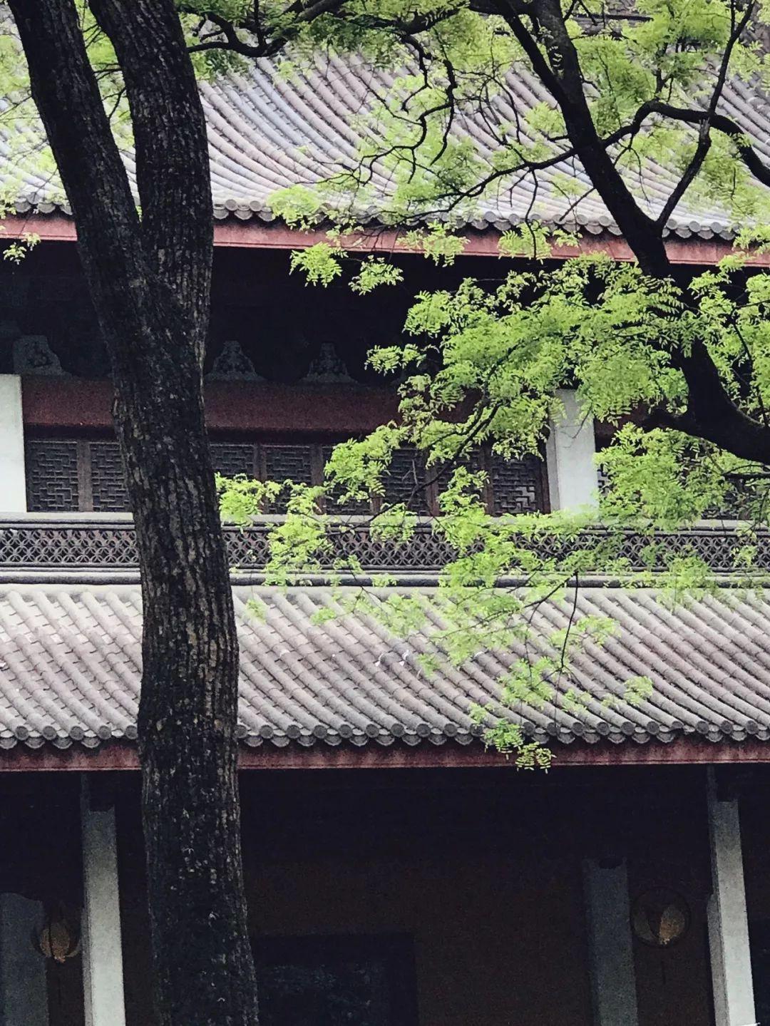 林语堂:玩的人,最有情趣情趣有没有无为酒店图片